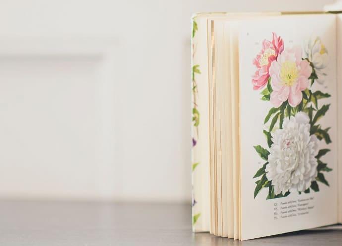 Bücher für die Acrylmalerei Hero